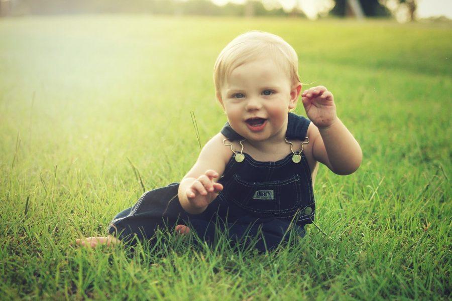 Enfant, Premiers-pas, Prises-électriques, Education, Petit-Enfant, Sécurité, Prévention, Intoxication Parents, Professionnels, Petite-Enfance,